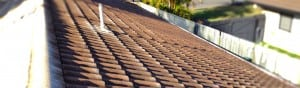 sl01-Cement-Tile-Roof-before-pressure-cleaning